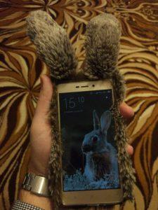 cudazali.pl - case na telefon - futrzak, królik z uszami