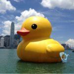 21 dziwnych produktów, które można kupić na Aliexpress - Gigantyczna-kaczka